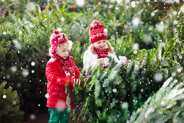 two blonde children standing next to a fir tree in the snow